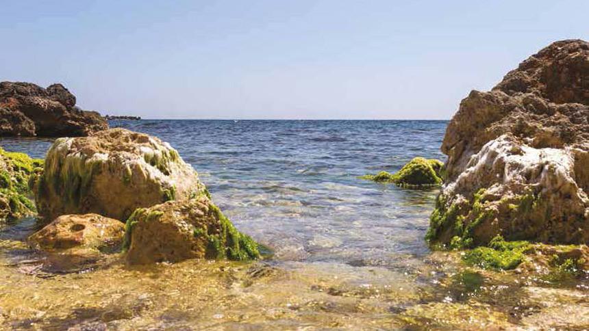 De la Familia Real británica, a las playas de Mallorca
