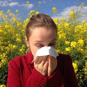 Cómo afectarán las alergias primaverales a trabajadores y empresas