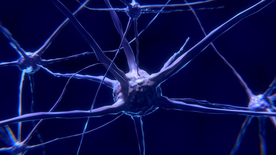 21 de junio: Día Internacional de la Esclerosis Lateral Amiotrófica (ELA)