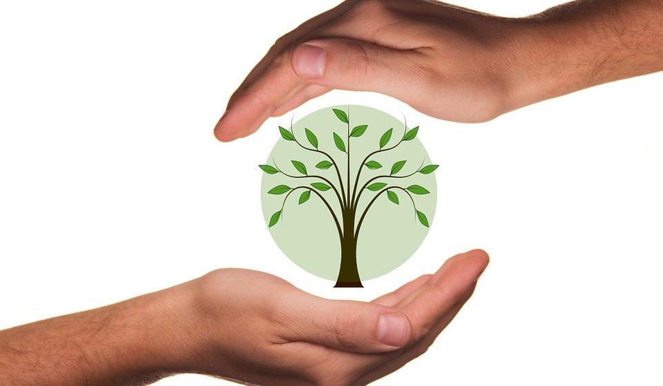 Alrededor de 2.000 euros al año por cuidar del medioambiente