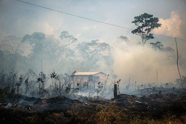LA TASA DE DEFORESTACIÓN DE LA AMAZONÍA SE HA INCREMENTADO UN 30% EN EL ÚLTIMO AÑO