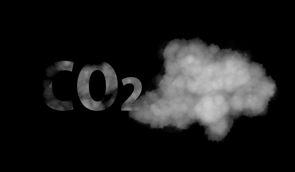 28 de enero: Día Mundial por la reducción de las emisiones de CO2 ¿CÓMO AFECTA LA CONTAMINACIÓN A NUESTRA SALUD CEREBRAL?
