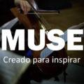 """""""NUESTRA MISIÓN COMO CUARTETO DE MÚSICA CLÁSICA ES SER TRANSMISOR DE CULTURA Y TOCAR EN PALMA ES MUY ESPECIAL"""""""